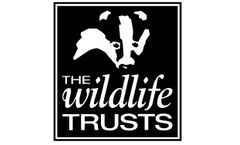 <p>The Wildlife Trusts</p> logo