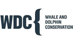 Whale and Dolphin Conservation Society logo
